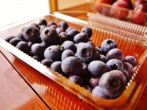 Blueberry_02